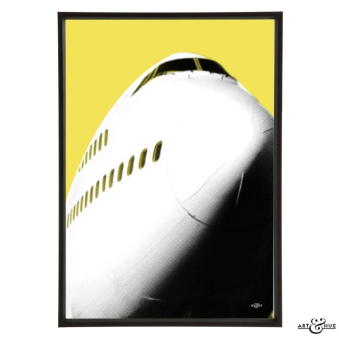 JetSet 747 Frame