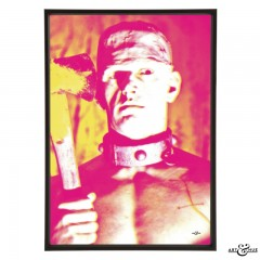 horror_of_frankenstein_nt_fuschia_yellow