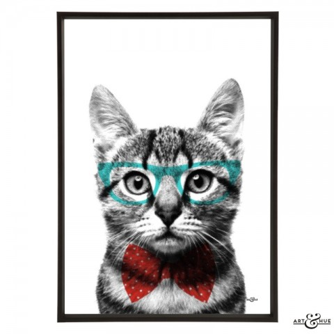 Smart_Kitten_Red_Aqua