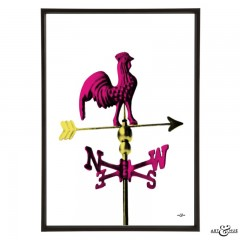 Weathervane_Fuchsia